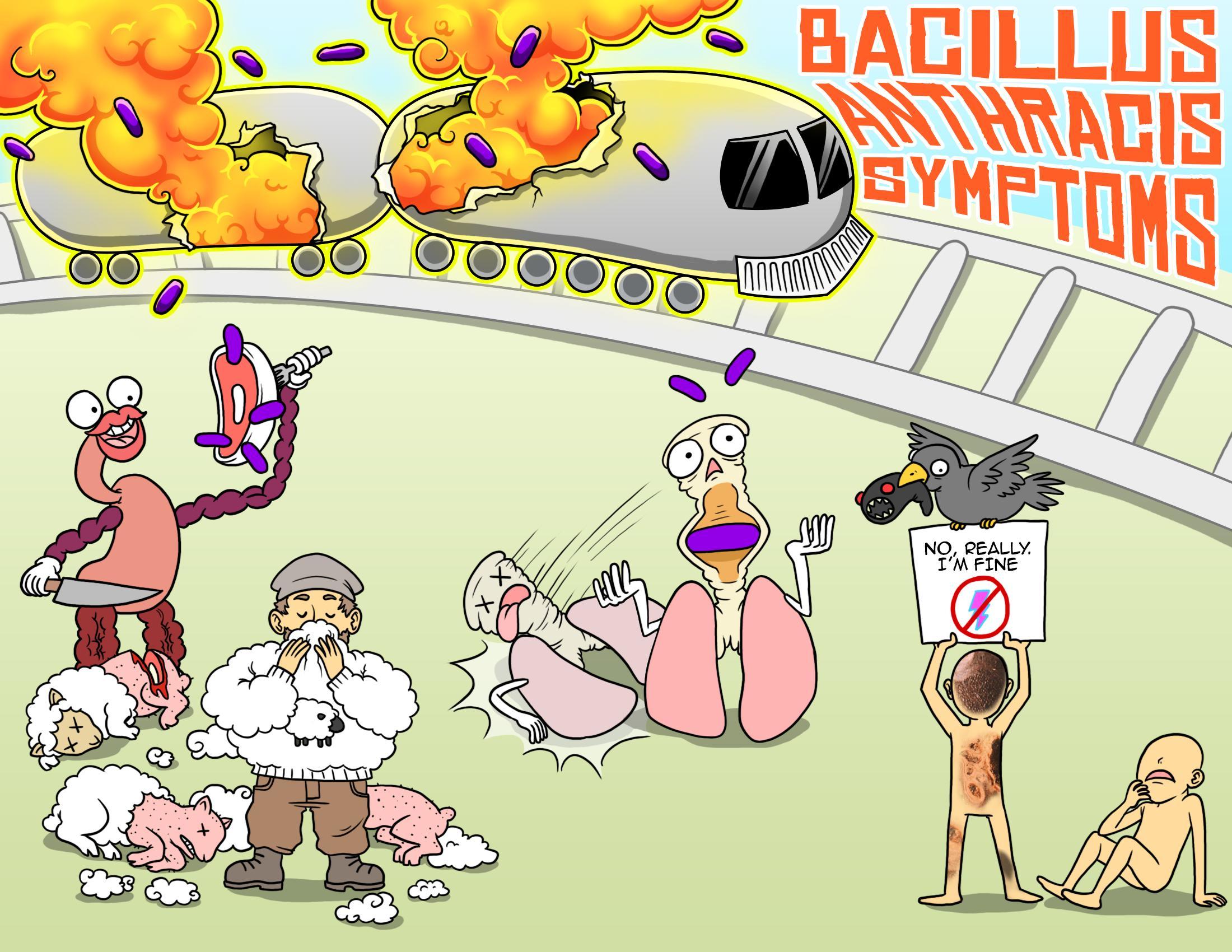 Bacillus Anthracis (Anthrax) Disease