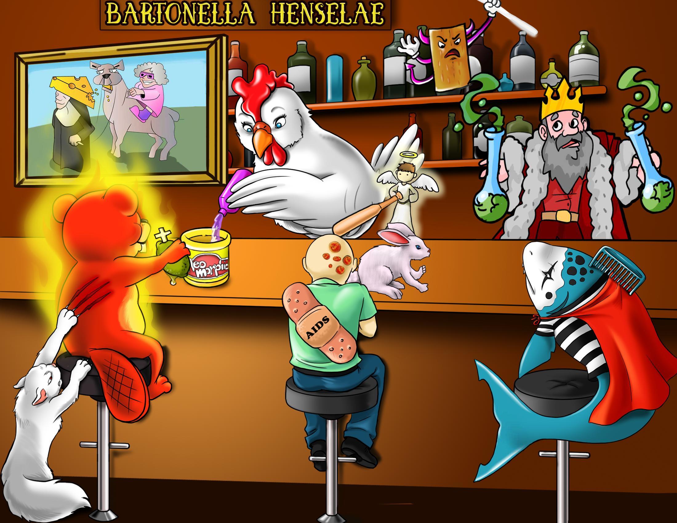 Bartonella henselae