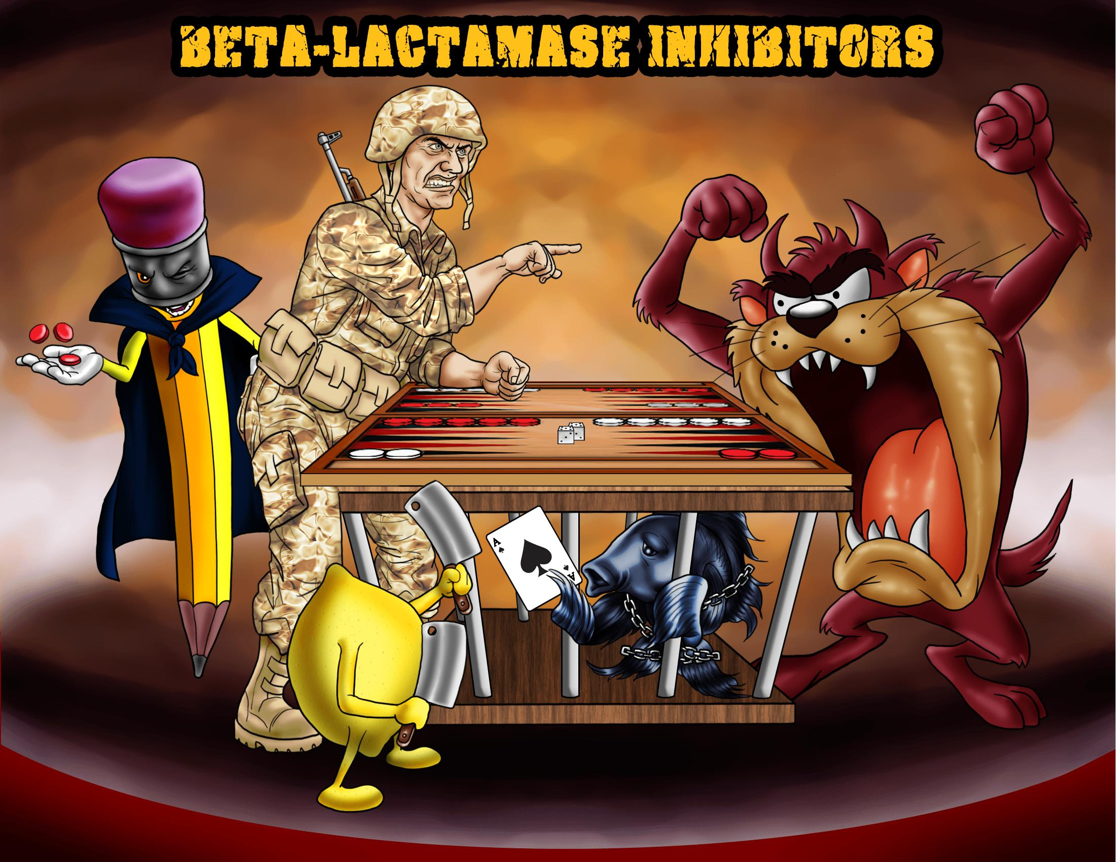 Beta-Lactamase Inhibitors