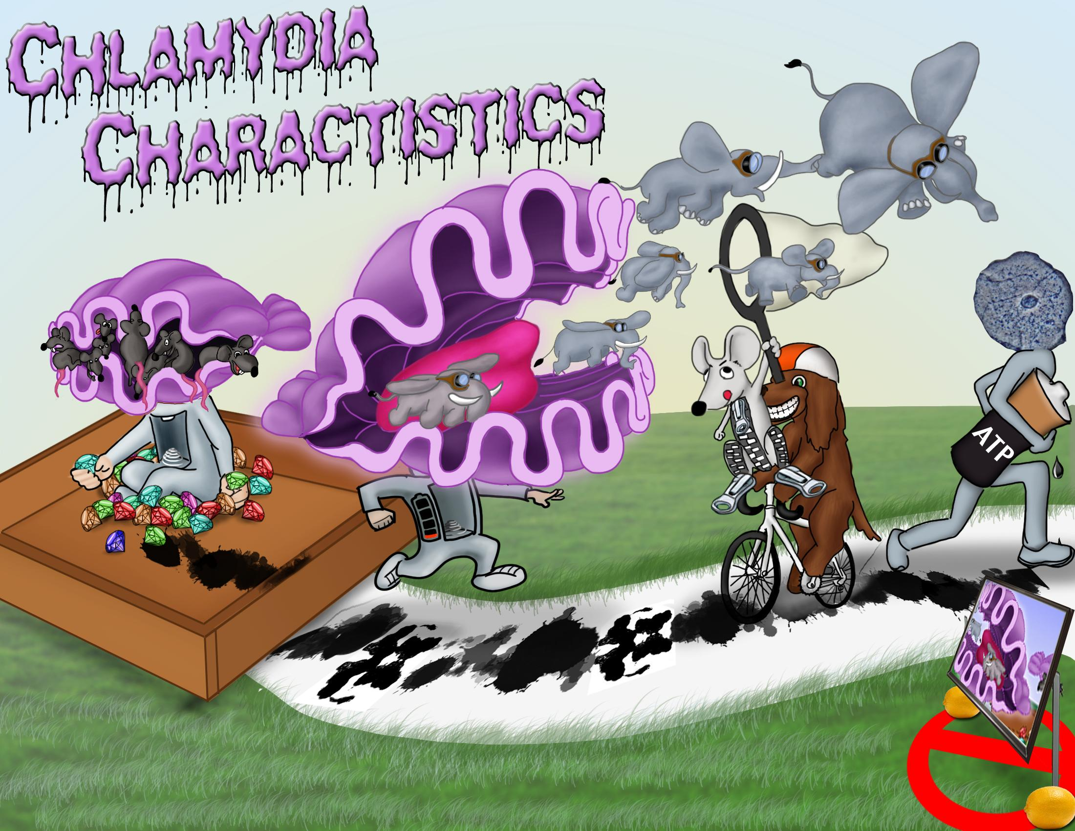 Chlamydia Characteristics