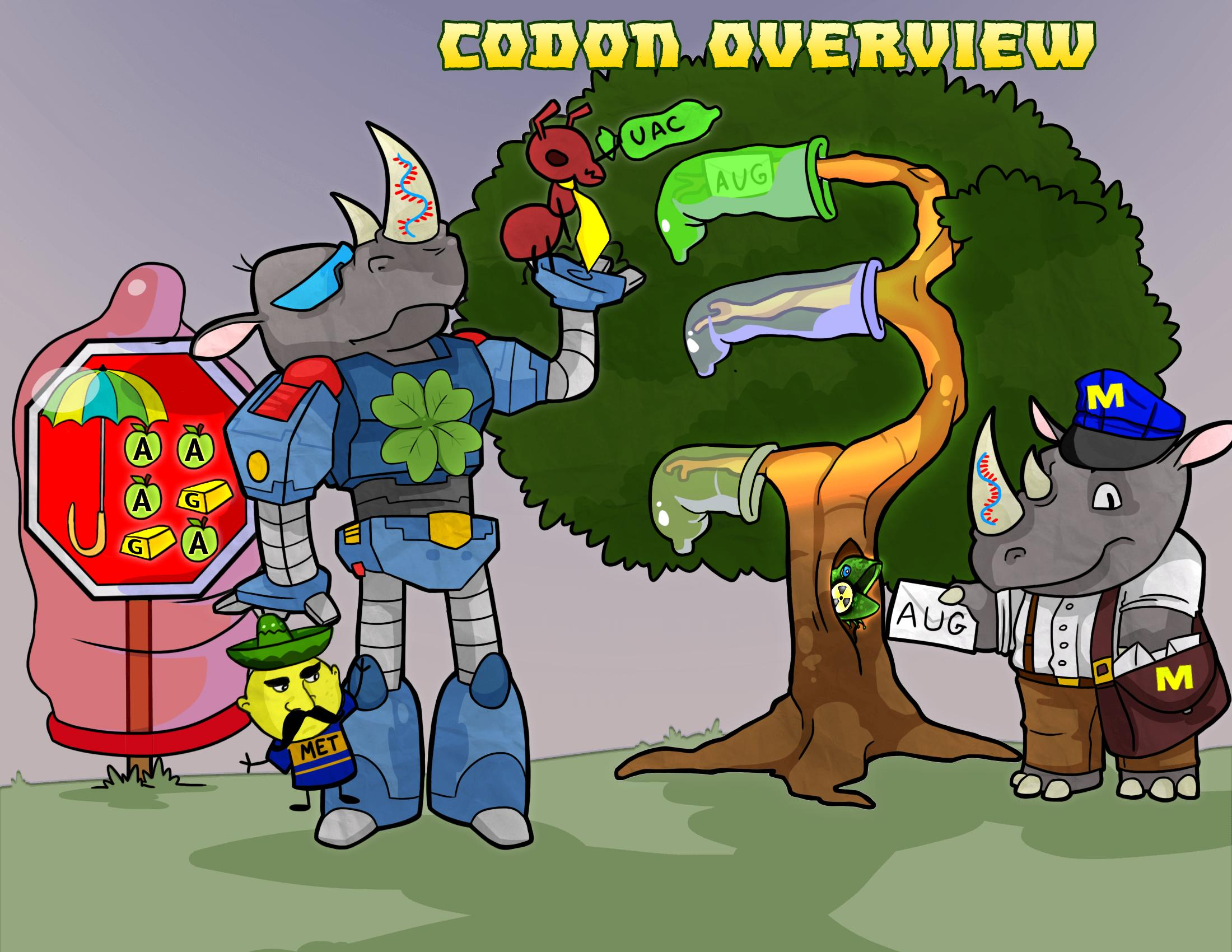 Codon Overview