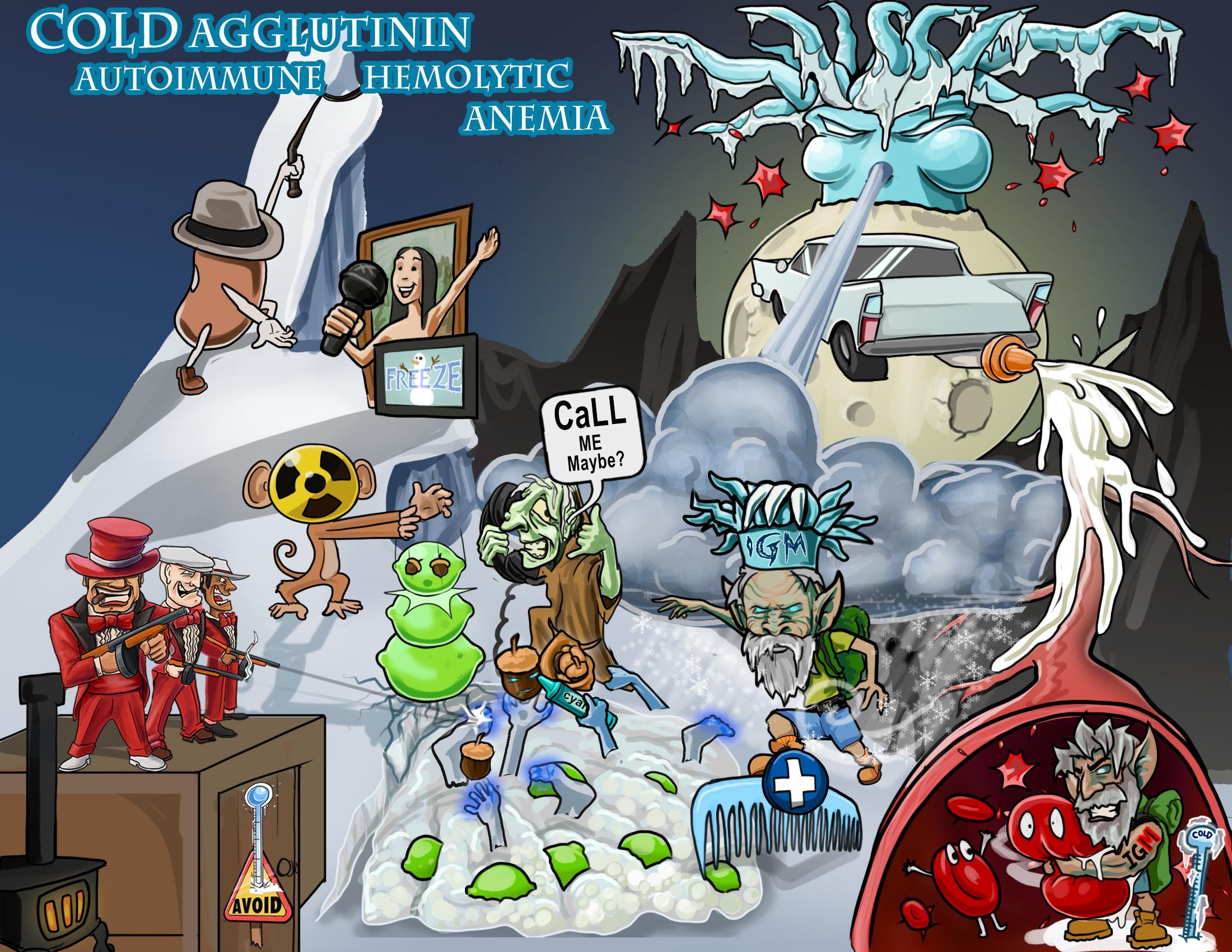 Cold Agglutinin Autoimmune Hemolytic Anemia (C-AIHA)