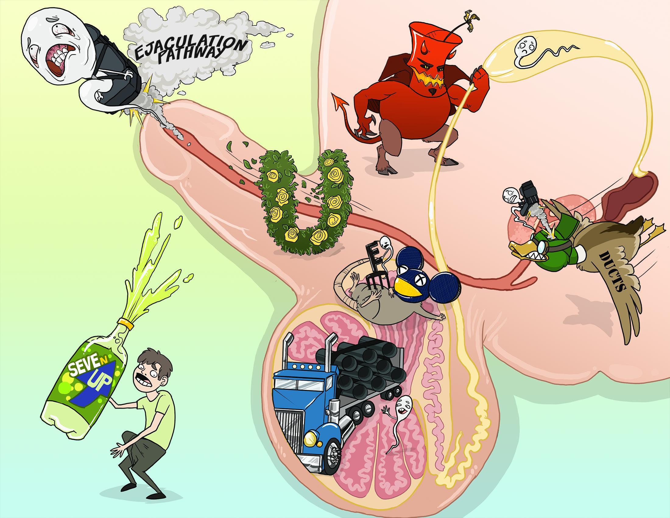 Ejaculation Pathway