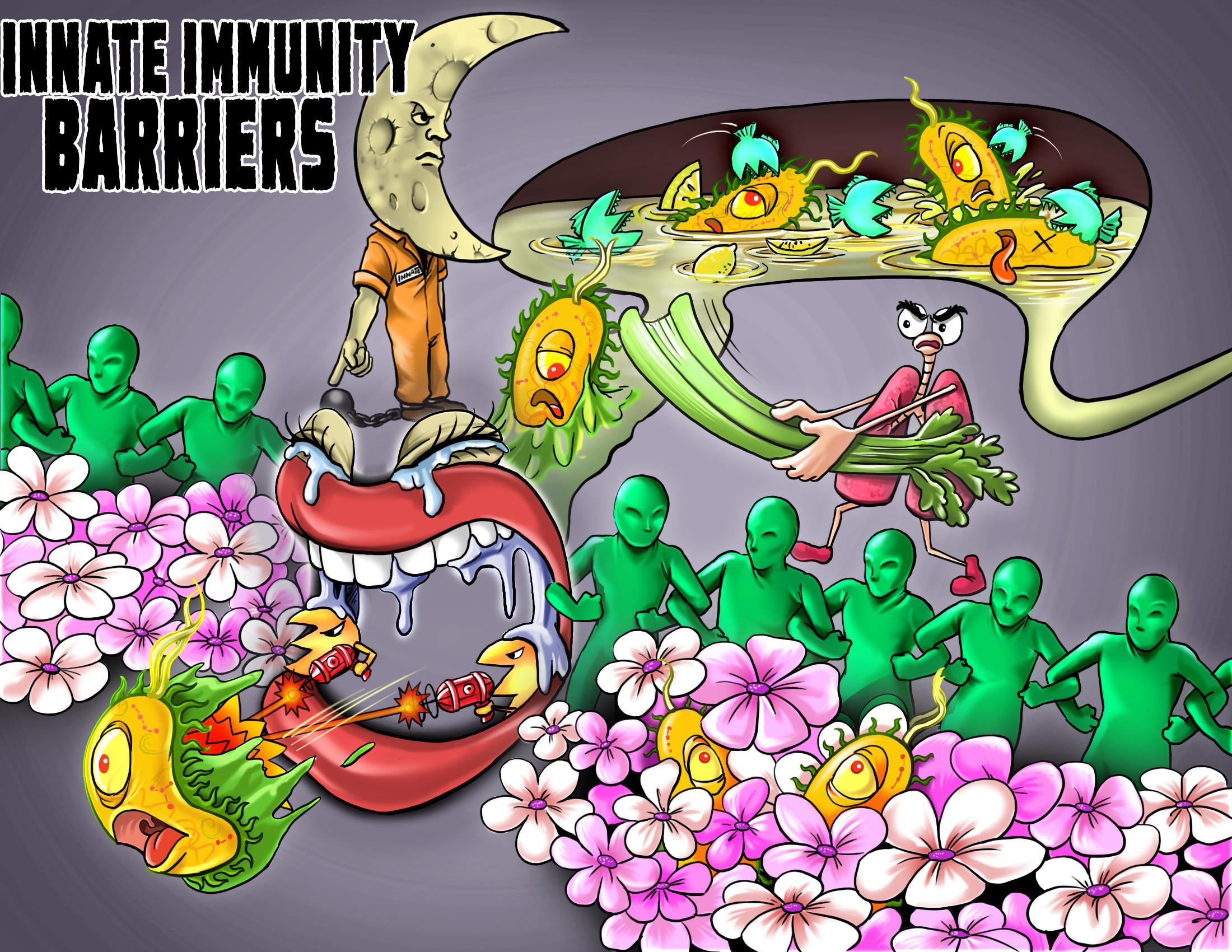 Innate Immunity Barriers