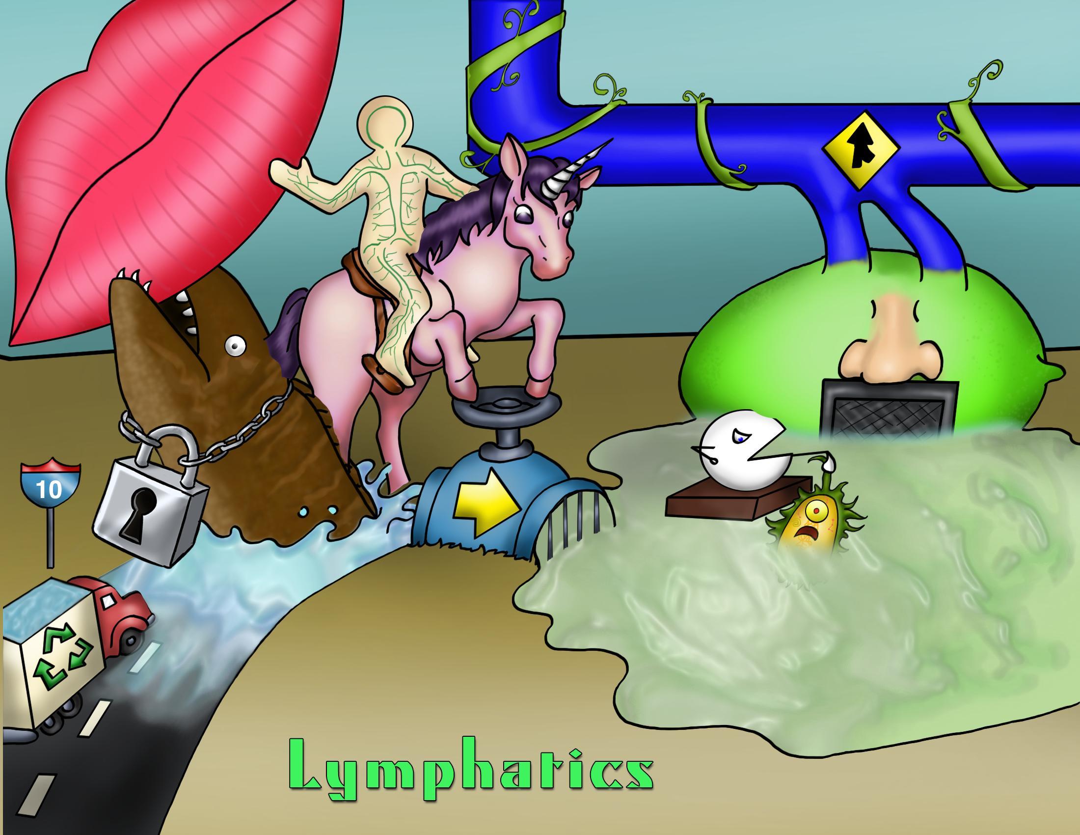 Lymphatics