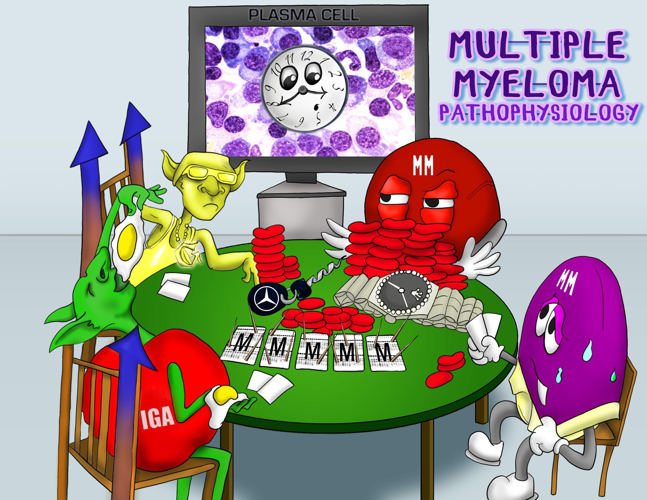 Multiple Myeloma Pathophysiology