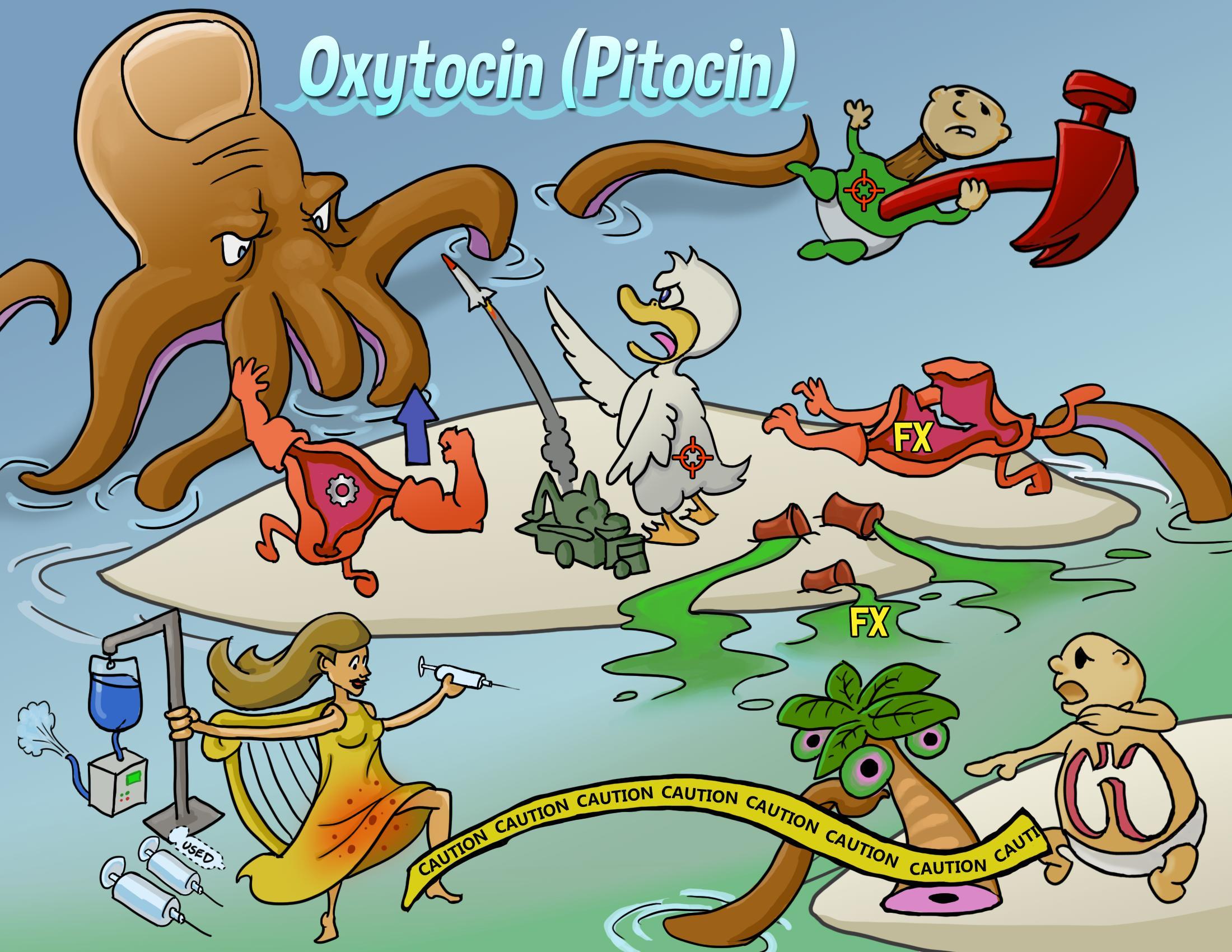 Oxytocin (Pitocin)