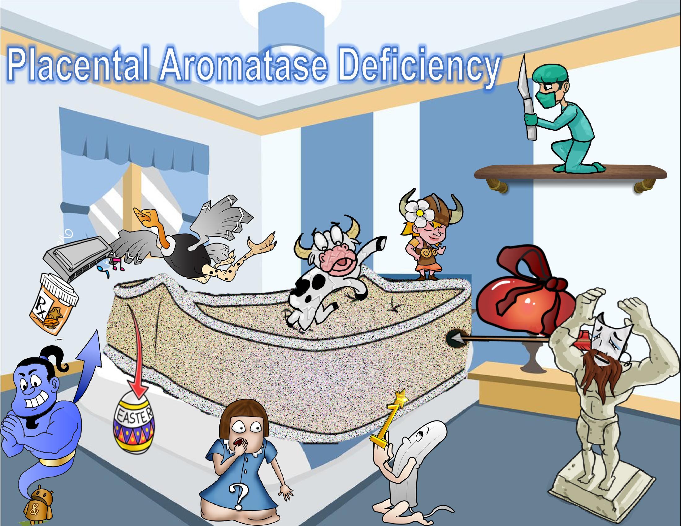 Placental Aromatase Deficiency