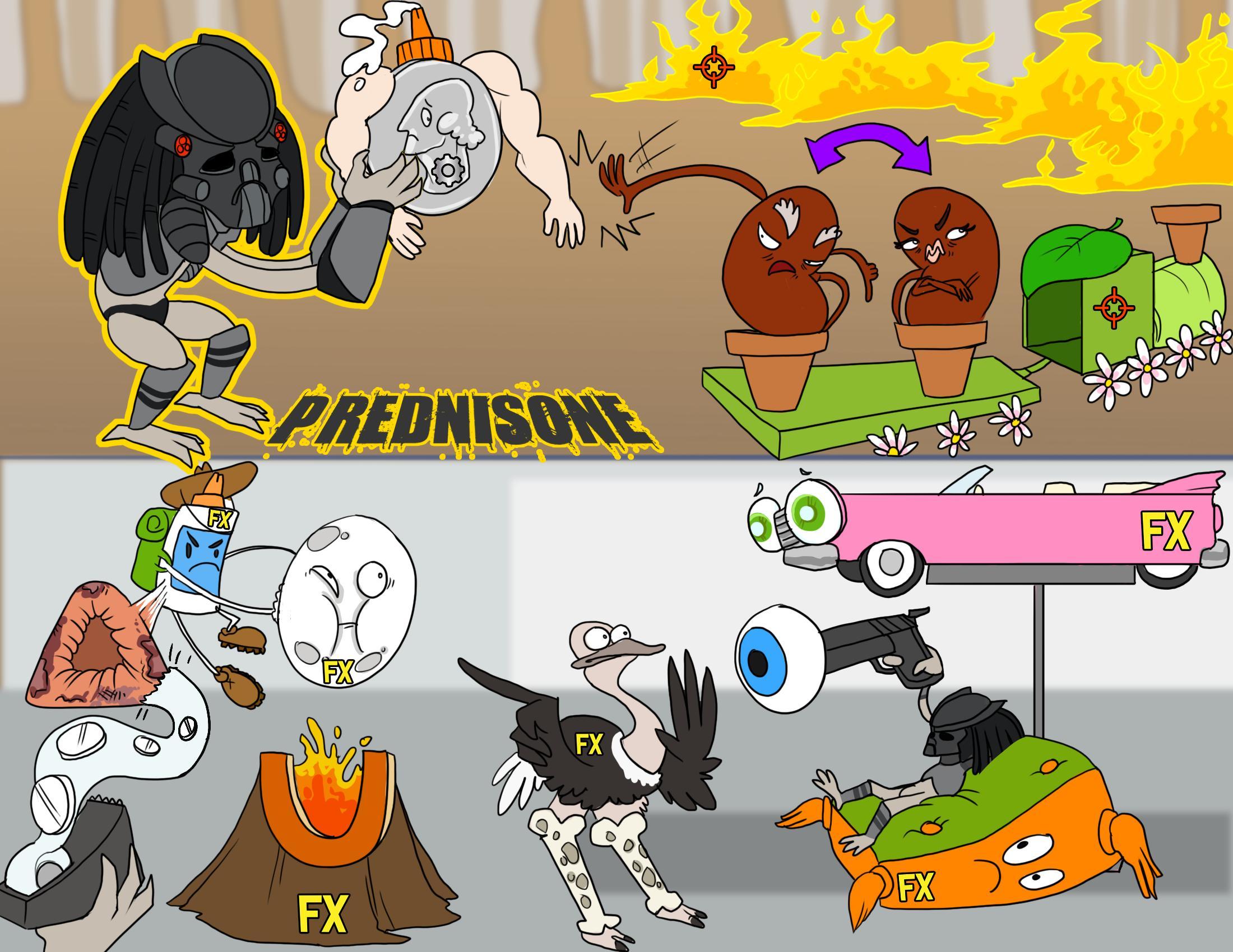 Prednisone (Glucocorticoids)