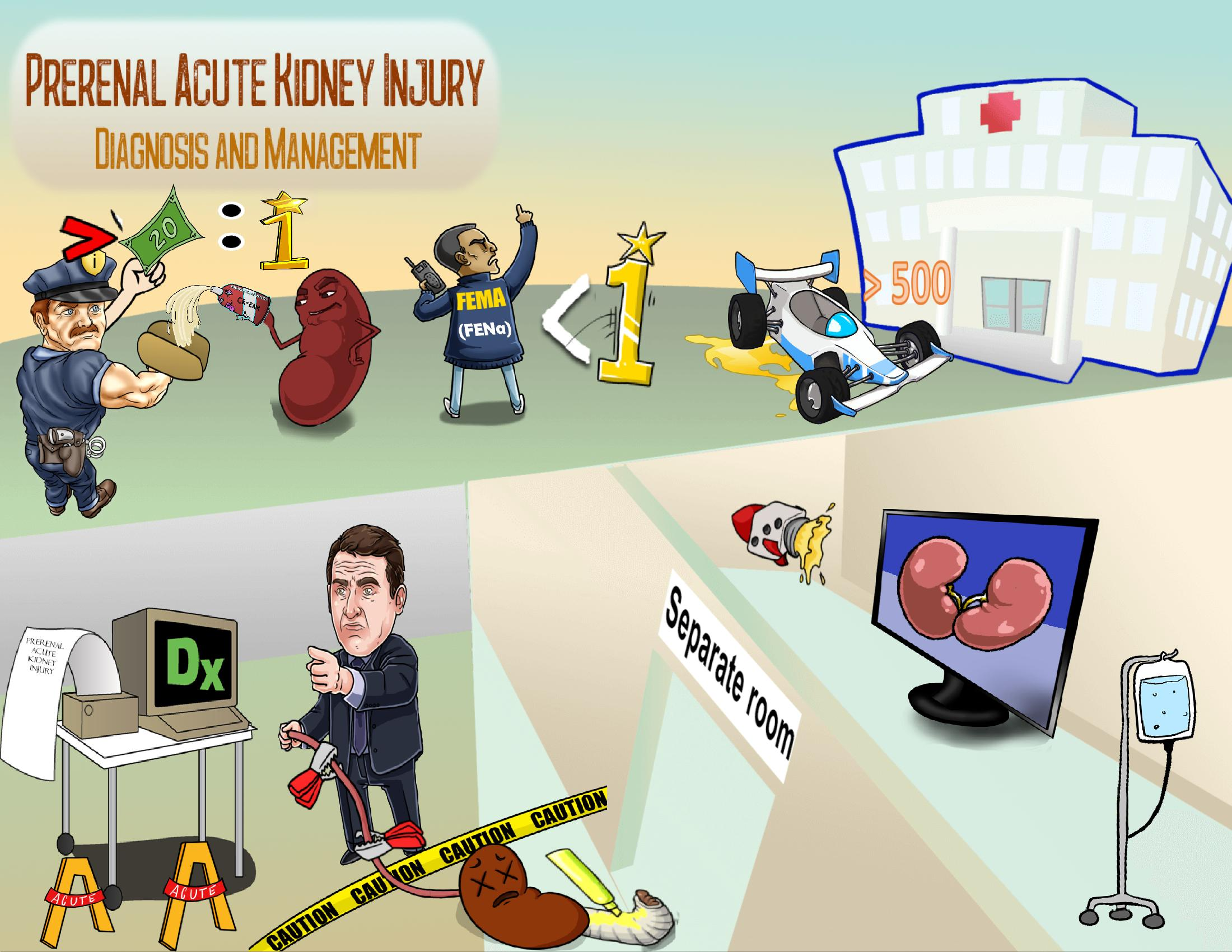 Prerenal Acute Kidney Injury Diagnosis and Management