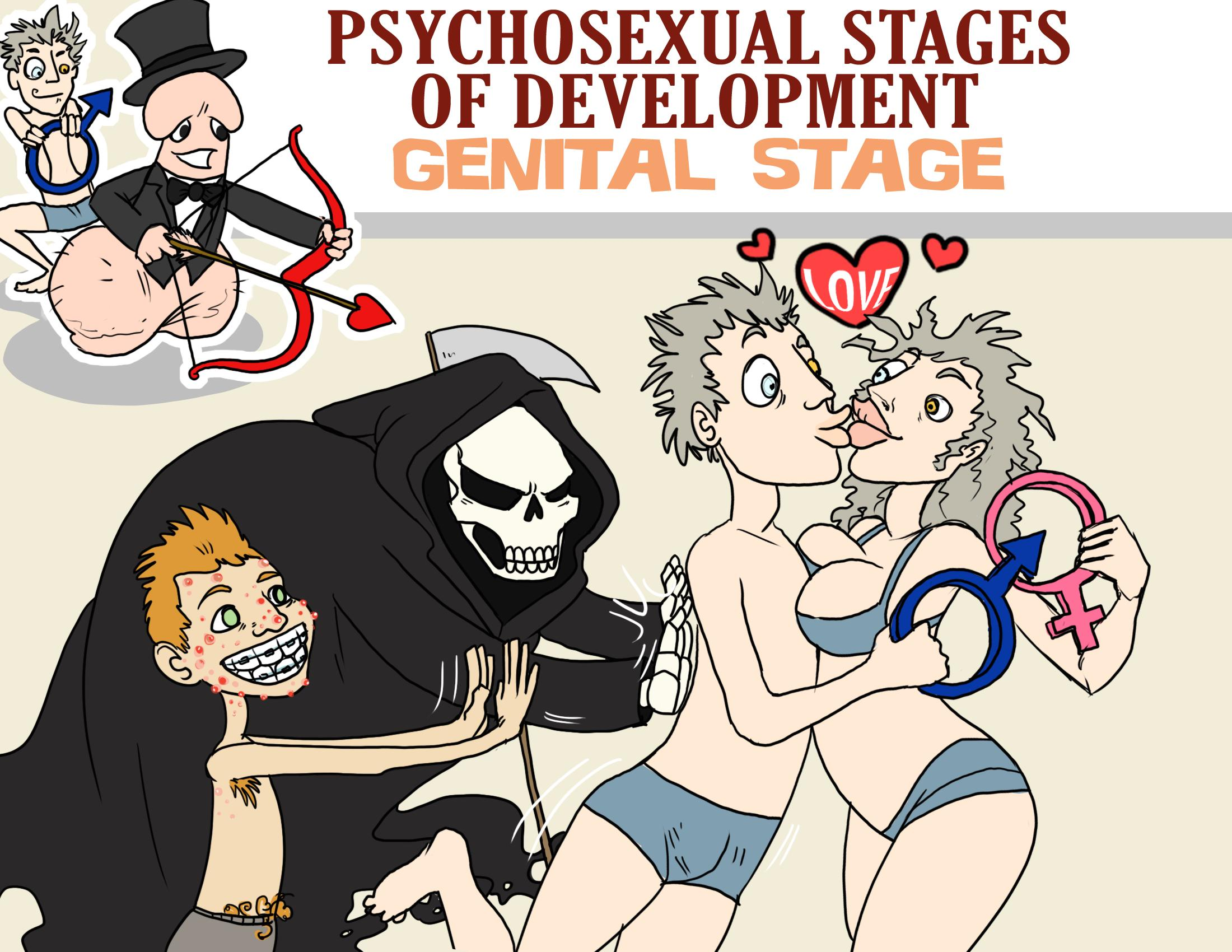 Psychosexual Stages of Development - Genital Stage
