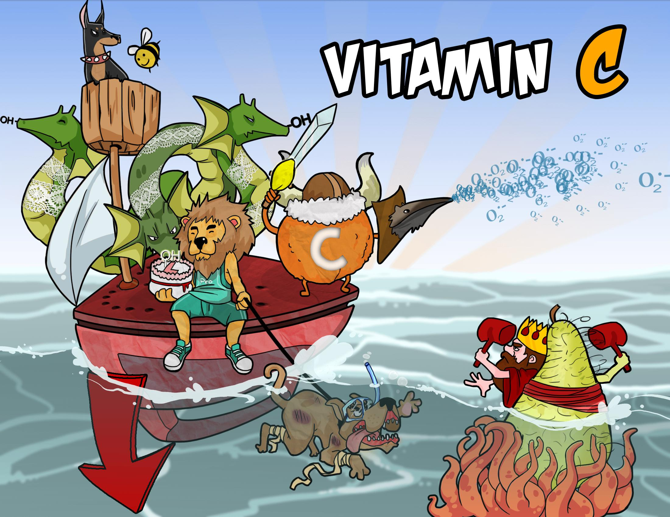 Vitamin C Mechanism And Deficiency