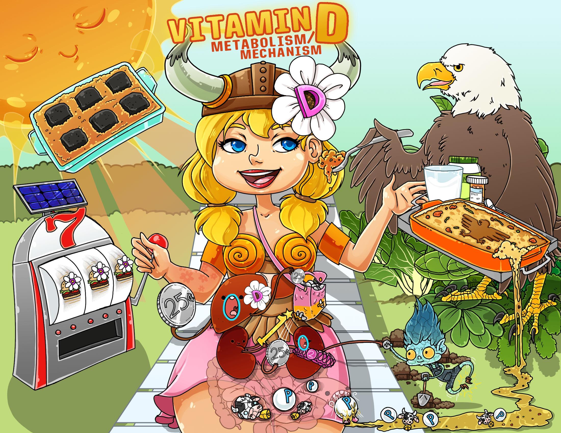 Vitamin D Metabolism/Mechanism