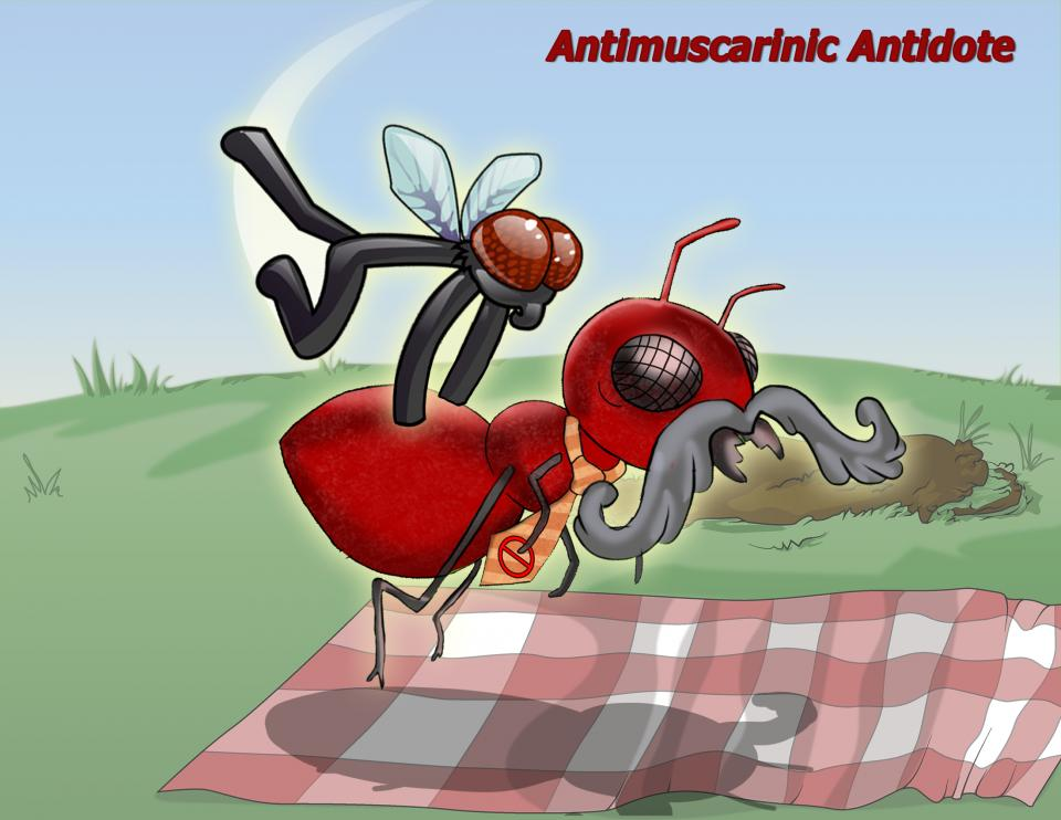 Antimuscarinic Antidote