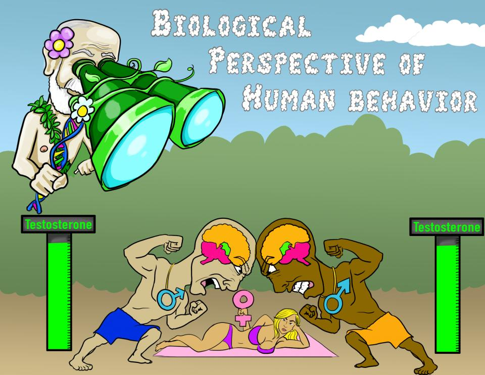 Biological Perspective of Human Behavior
