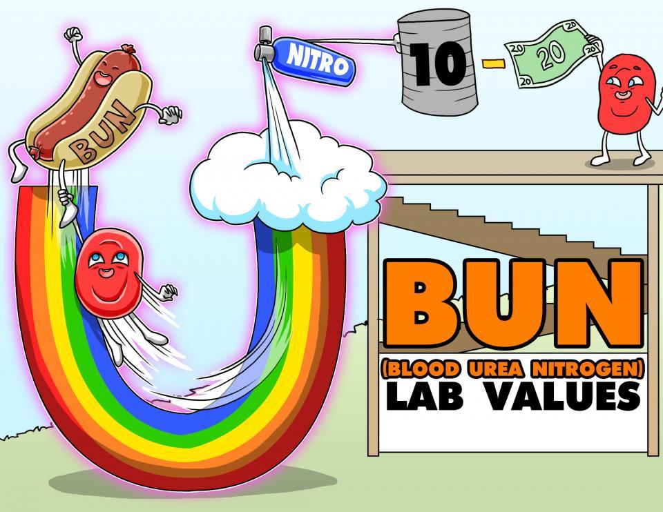BUN (Blood Urea Nitrogen) Lab Values