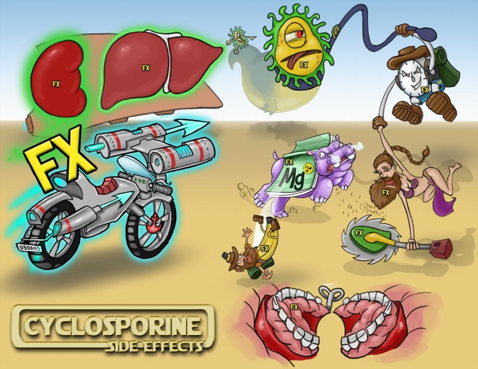Cyclosporine (Sandimmune) Side Effects