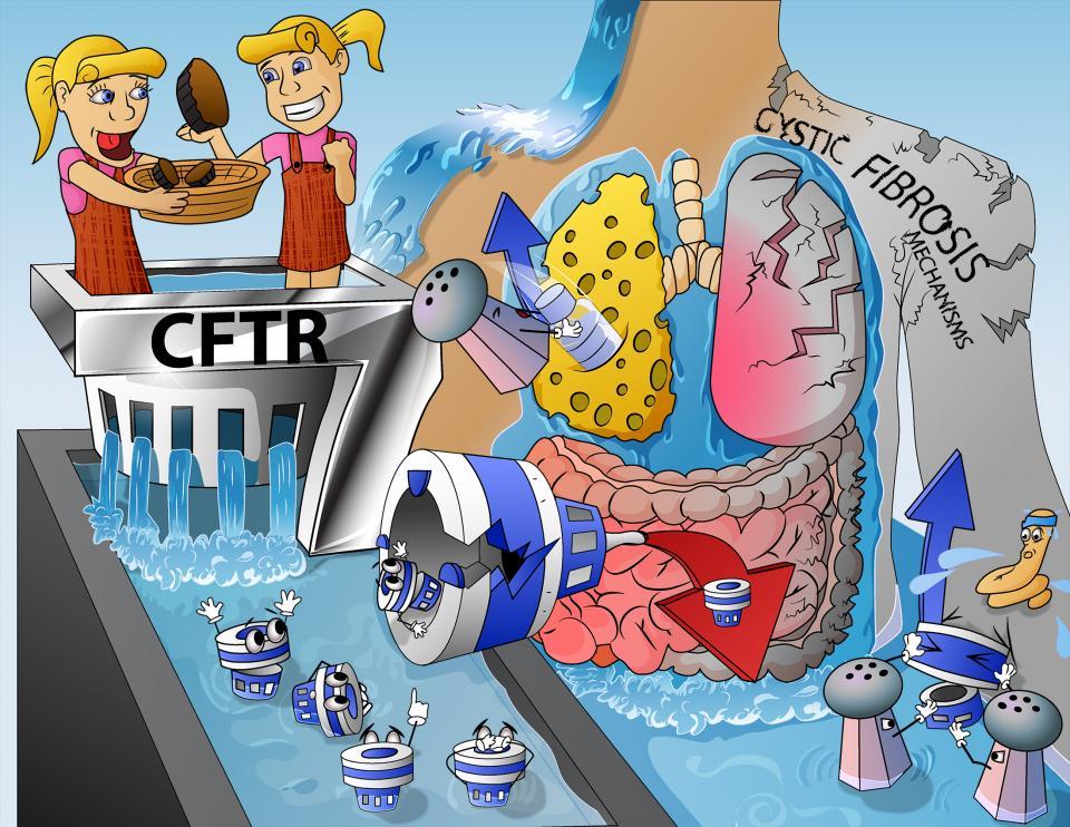 Cystic Fibrosis Mechanisms