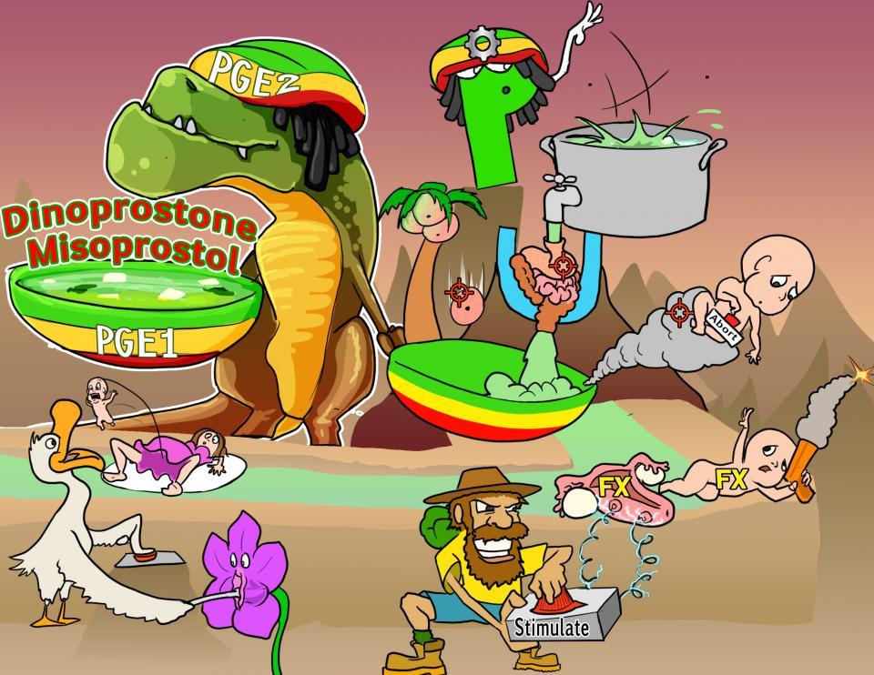 Dinoprostone and Misoprostol