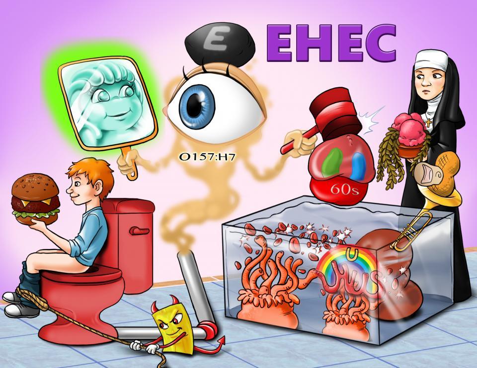 EHEC (Enterohemorrhagic E. Coli)