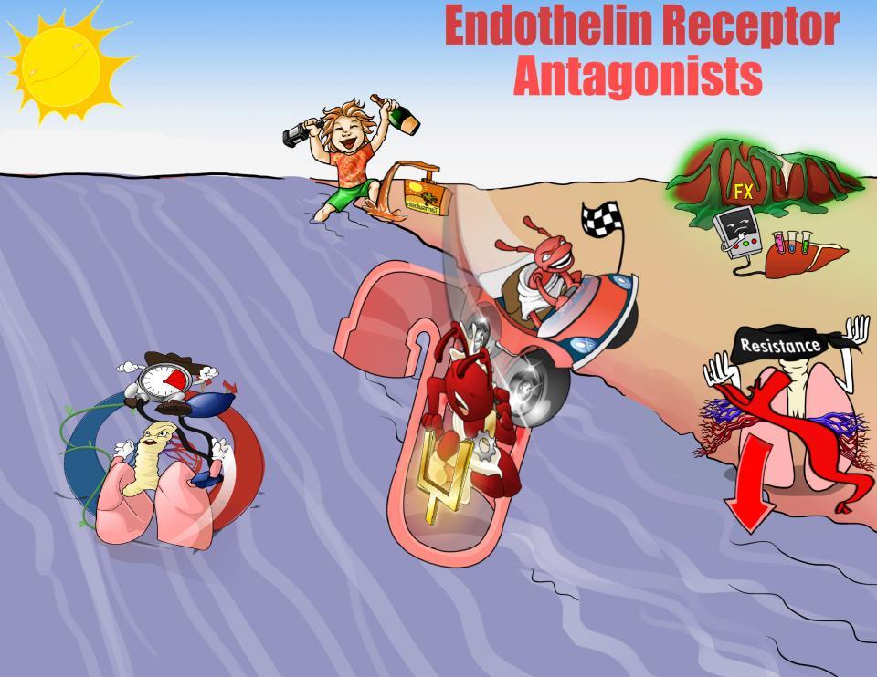 Endothelin Receptor Antagonists