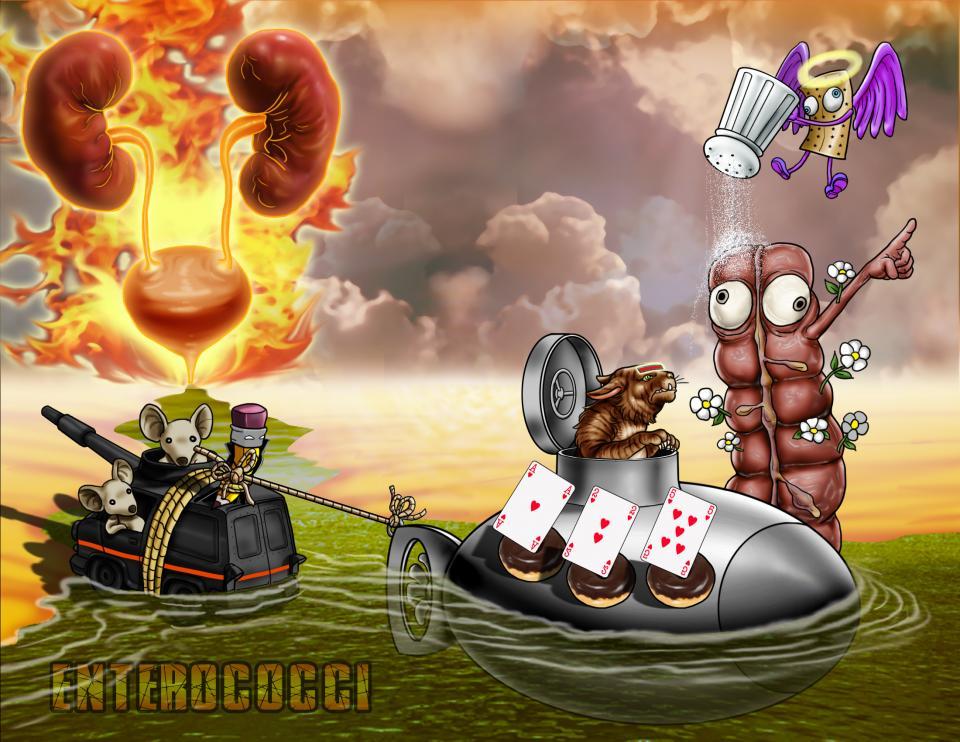 Enterococci