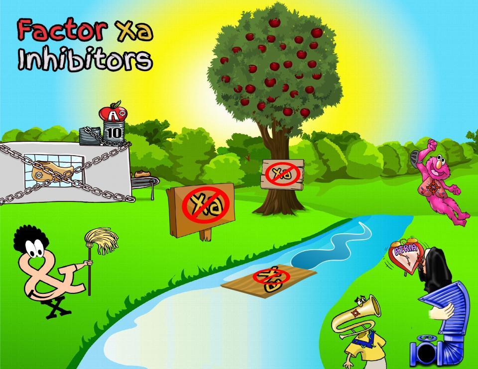 Factor Xa Inhibitors