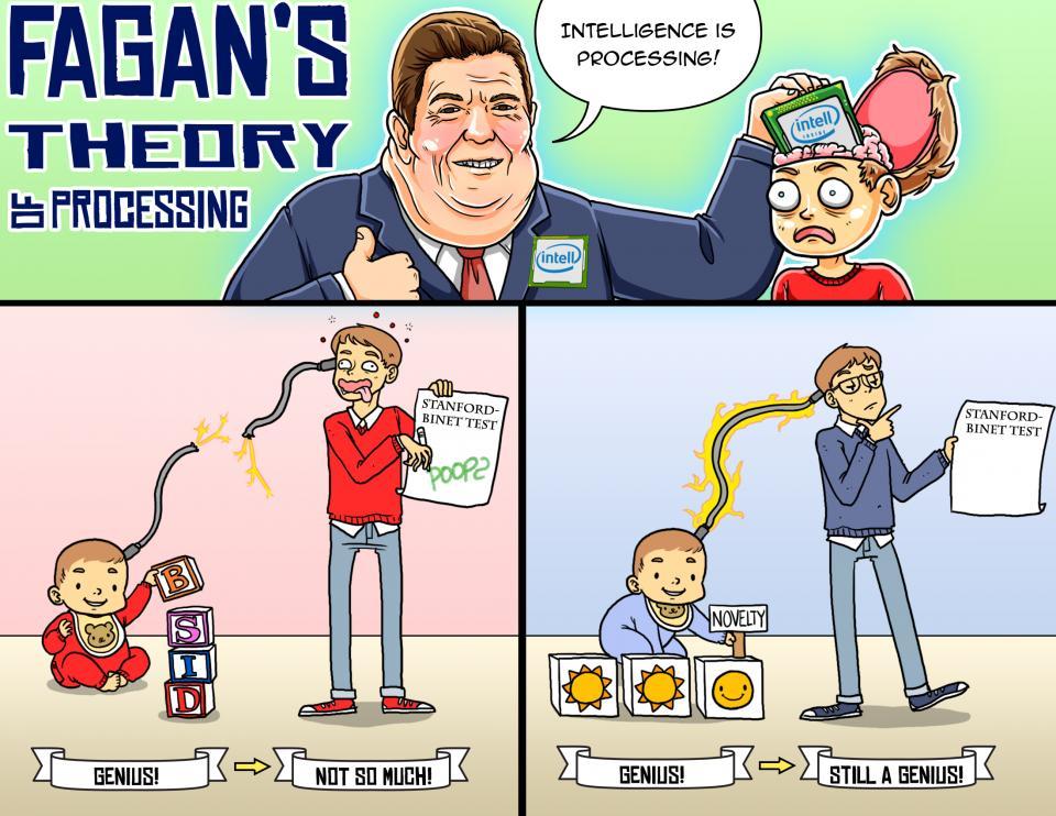 Fagan's Theory of Processing