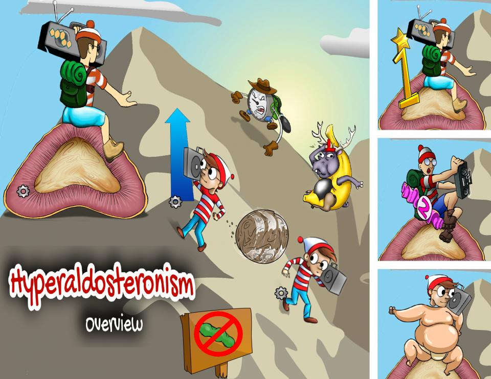 Hyperaldosteronism Overview