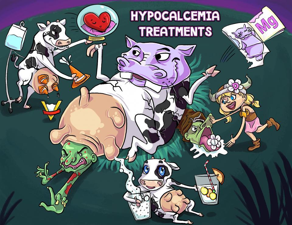 Hypocalcemia Treatments
