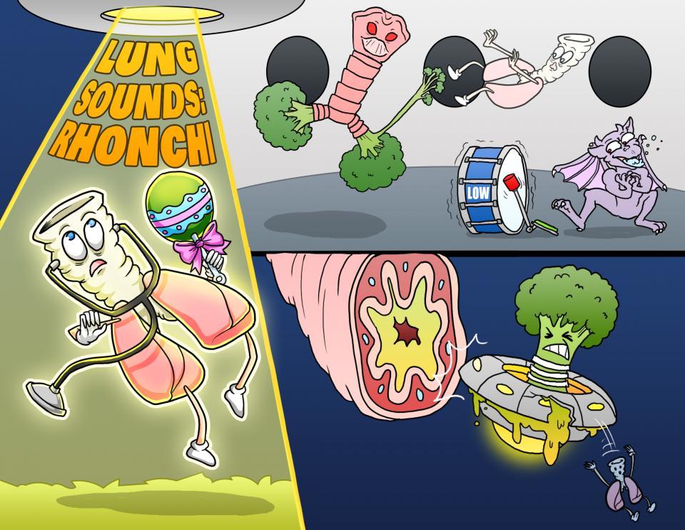 Lung Sounds - Rhonchi
