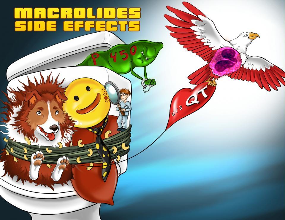 Macrolides Side Effects
