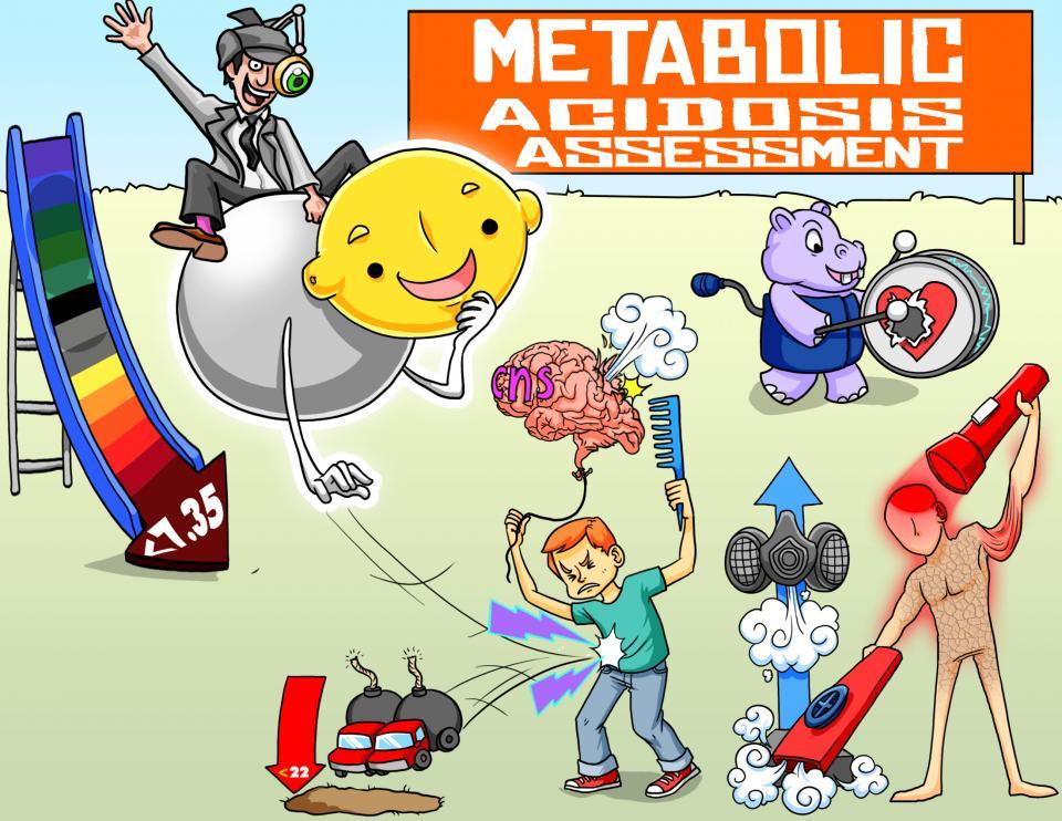 Metabolic Acidosis Assessment