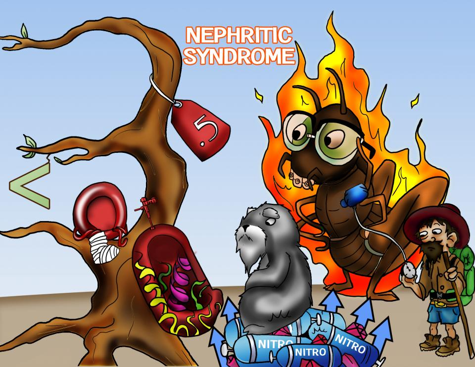 Nephritic Syndrome