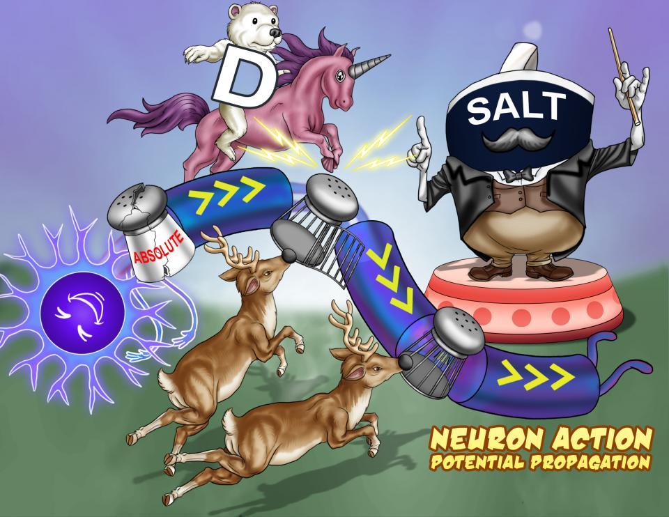 Neuron Action Potential Propagation