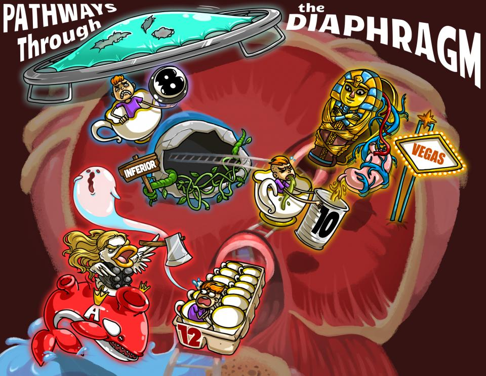 Pathways through the Diaphragm