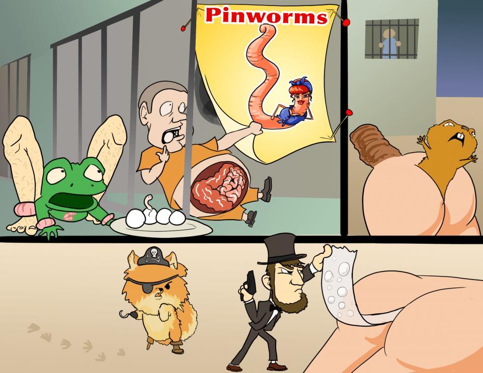 Pinworm (Enterobius Vermicularis)