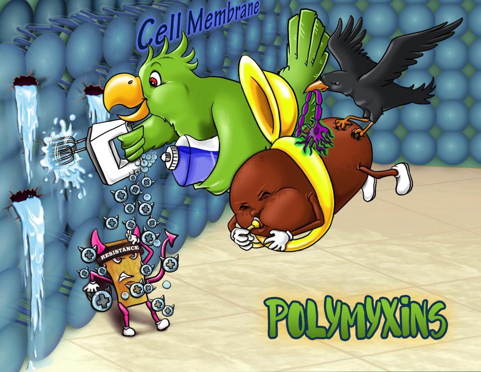 Polymyxins