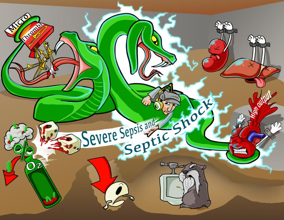 Severe Sepsis and Septic Shock Assessment
