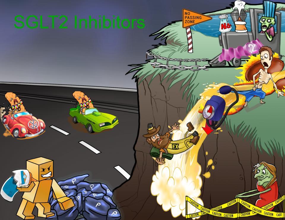 SGLT2 Inhibitors