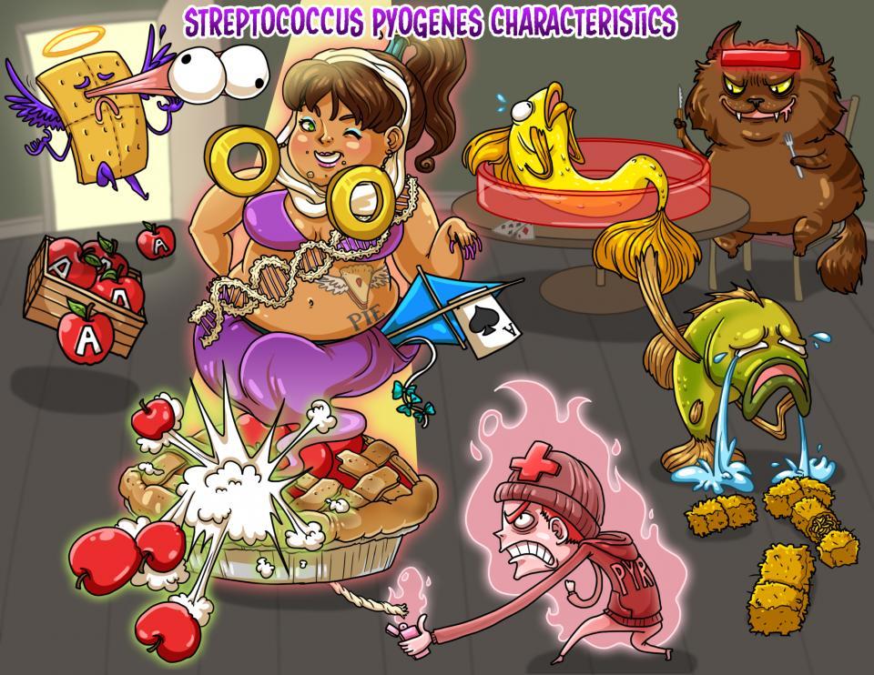 Streptococcus pyogenes Characteristics