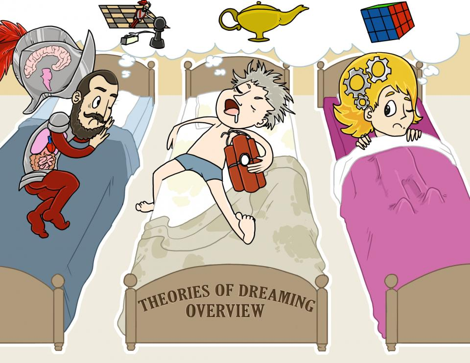 Theories of Dreaming (Overview)