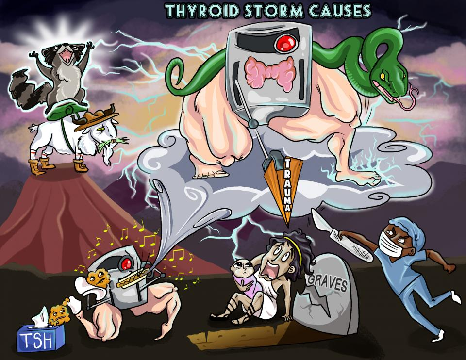 Thyroid Storm Causes