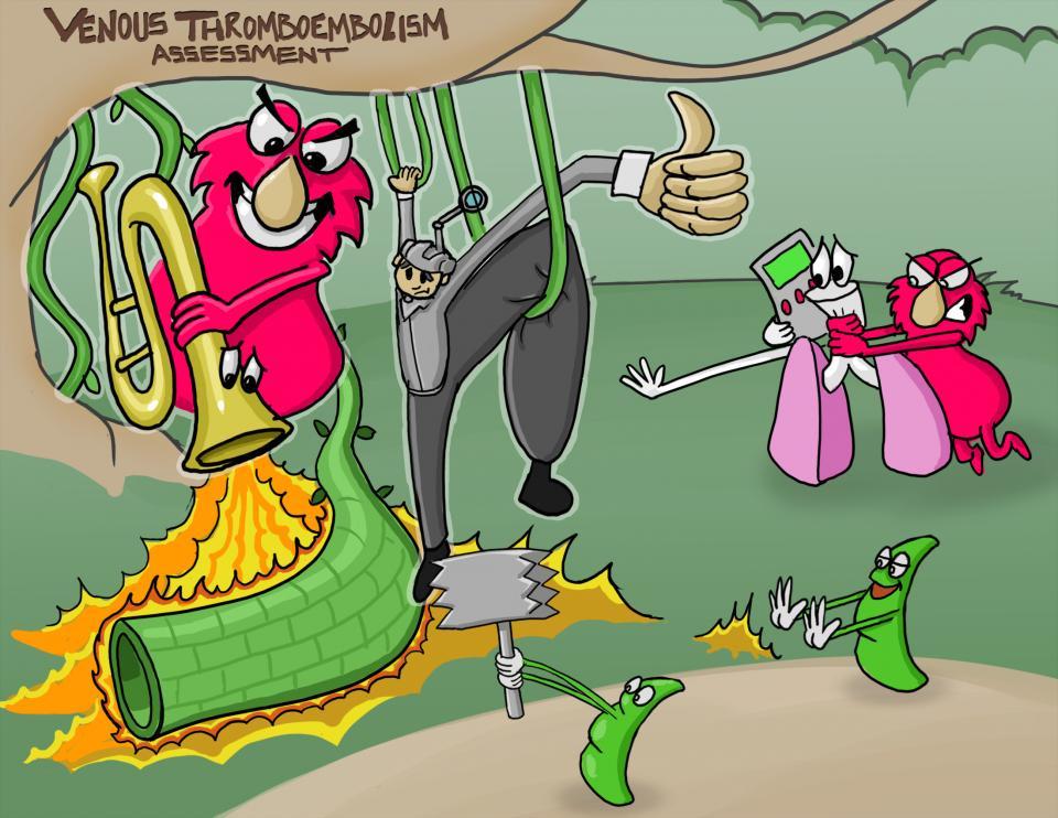 Venous Thromboembolism (DVT) Assessment