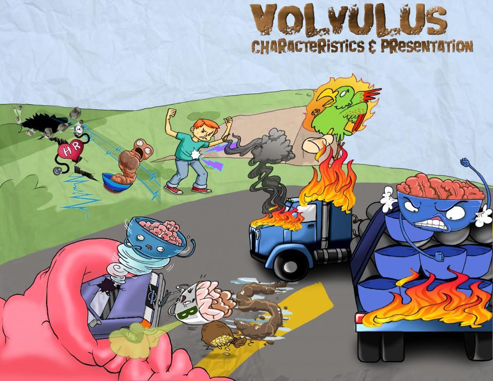 Volvulus Characteristics and Presentation