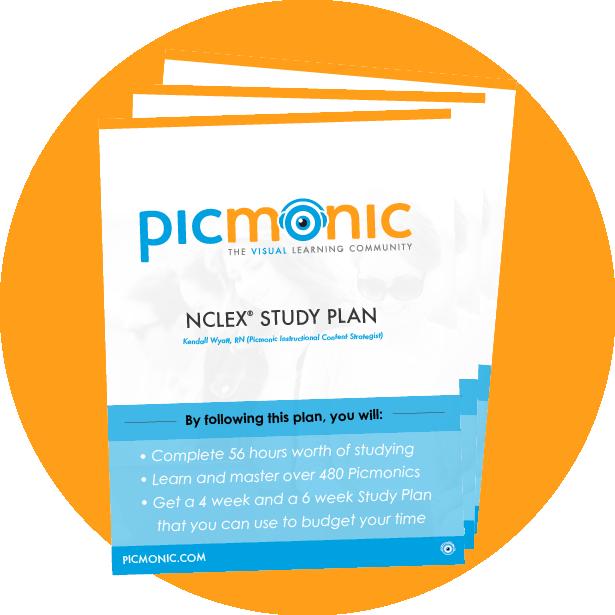 6 - Study Plan Icon