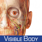 Include the Human Anatomy Atlas in your NCLEX® study plan