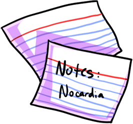 nursing study tips