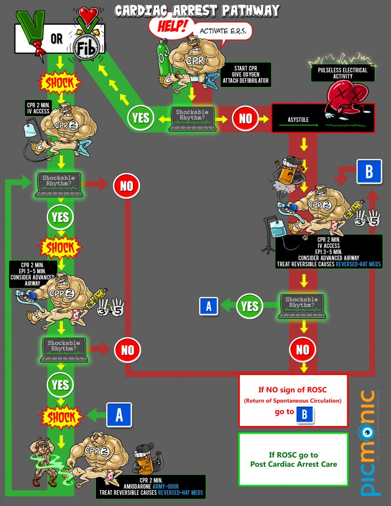 ACLS Pathway