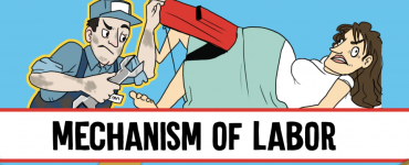 Mechanism of Labor